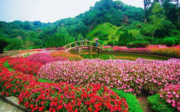 rose garden bkk