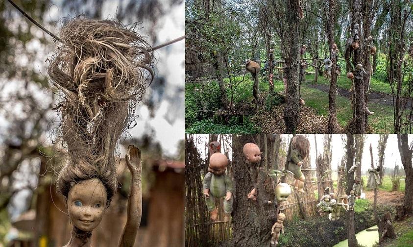 گورستان عروسک ها مکزیکوسیتی