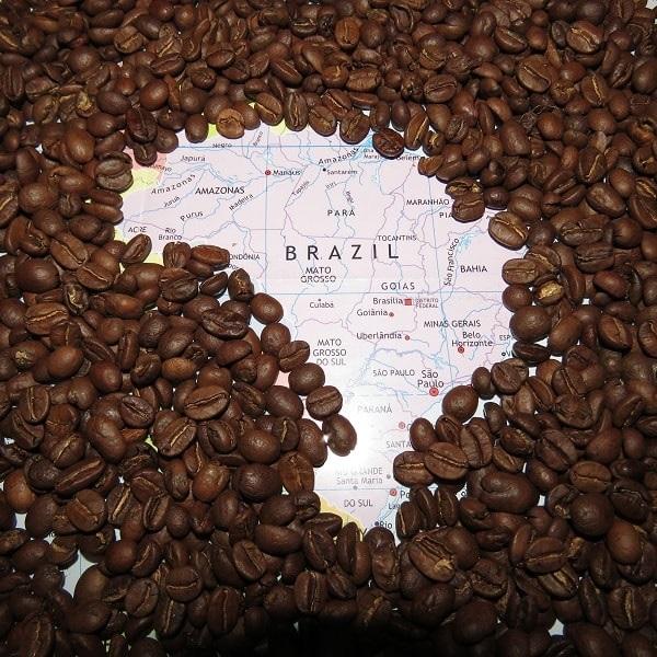 قهوه های اصل برزیل