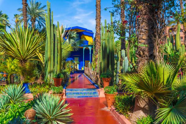 باغ ماژورال مراکش از جاذبه های دیدنی مراکش-سایت بوکینگ
